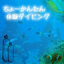 trial scuba diving in okinawa